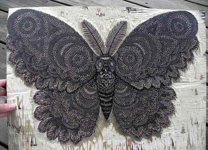 Molie sculptata cu incredibil de multe detalii - Poza 1