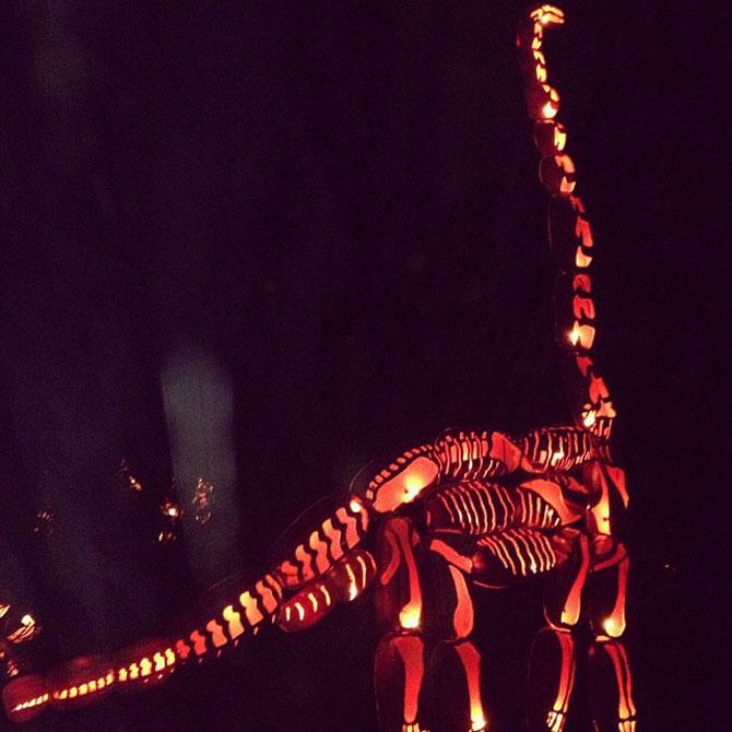Dragoni si dinozauri din dovleci sculptati