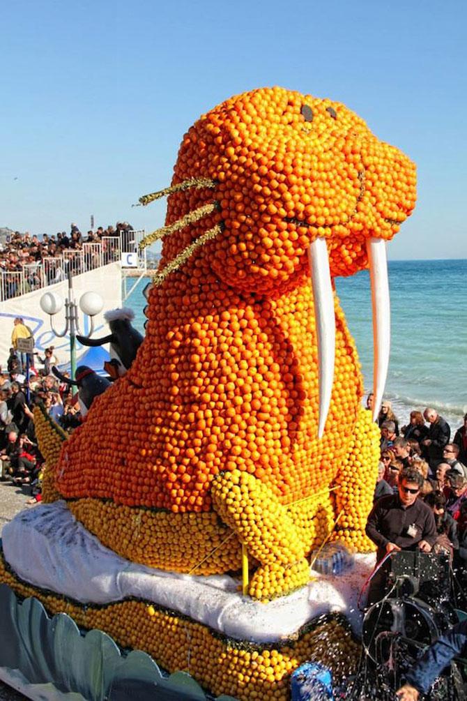 Festivalul lamailor din Franta - Poza 5