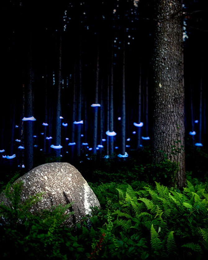 Fotograful care sculpteaza peisaje cu lumina - Poza 2