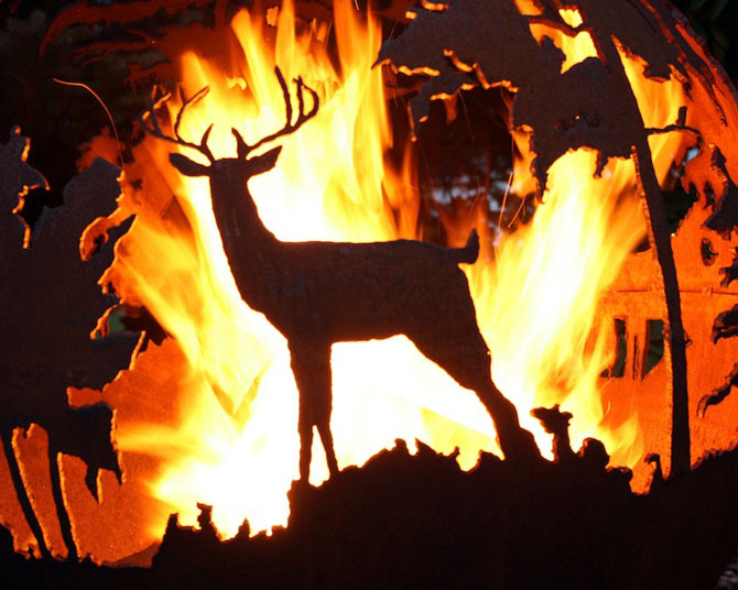 Focul din padure, de Melissa Crisp - Poza 5