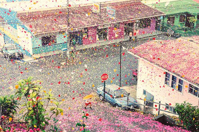 Costa Rica acoperita de petale pentru Sony Bravia - Poza 1