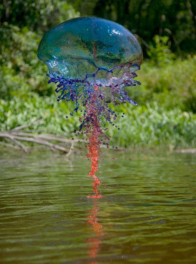 Splashuri de culoare, de Jack Long - Poza 4