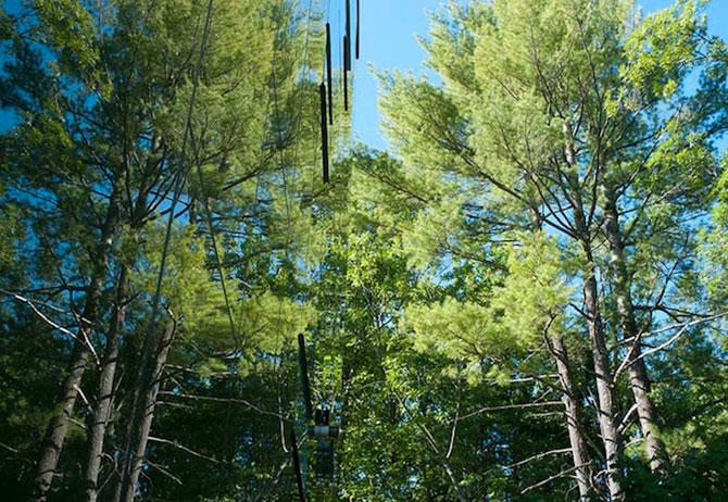 Casa din copaci, de Thomas Gluck - Poza 6