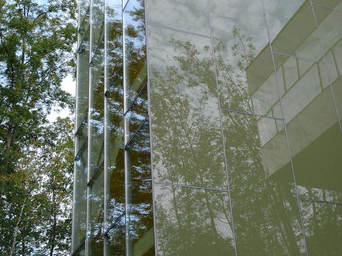 Casa din copaci, de Thomas Gluck - Poza 7