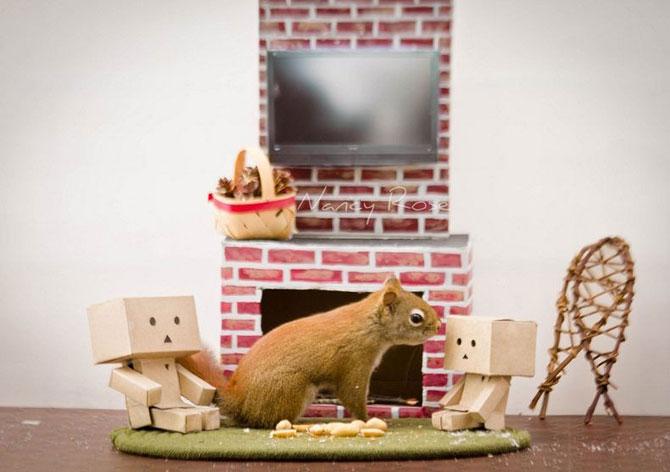 Mici aventuri cu veverite, de Nancy Rose - Poza 7