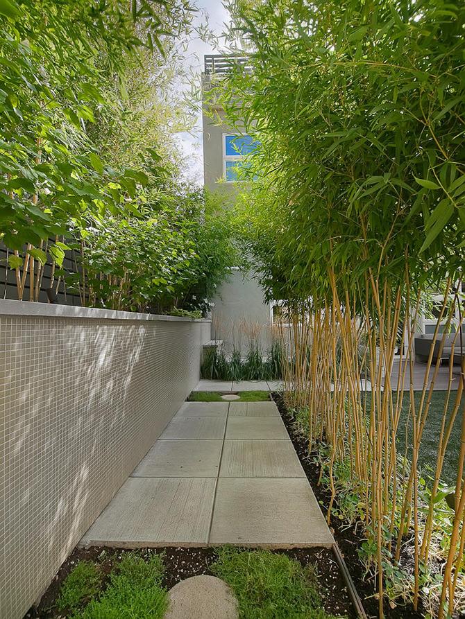 Pasiune si modernism la Denver - Poza 6