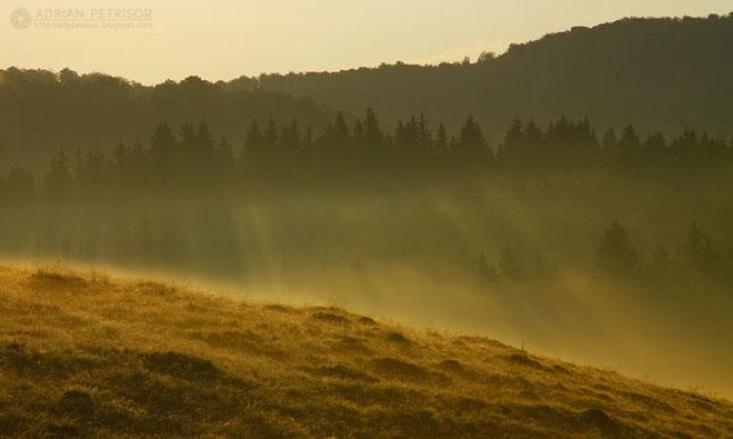 Romania vazuta de Adrian Petrisor - Poza 12
