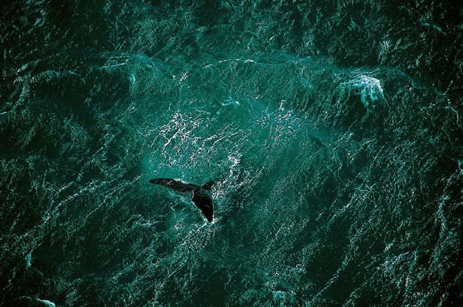 Exploreaza lumea de sus in 44 de poze minunate - Poza 13