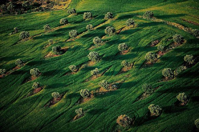 Exploreaza lumea de sus in 44 de poze minunate - Poza 43