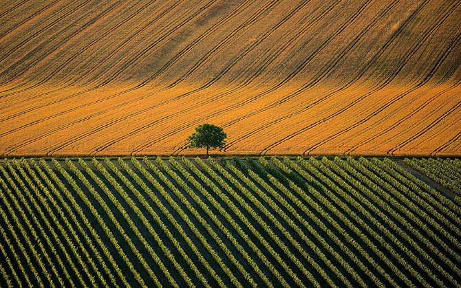 Exploreaza lumea de sus in 44 de poze minunate - Poza 7