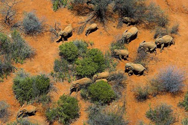 10 poze superbe: Africa - Poza 8
