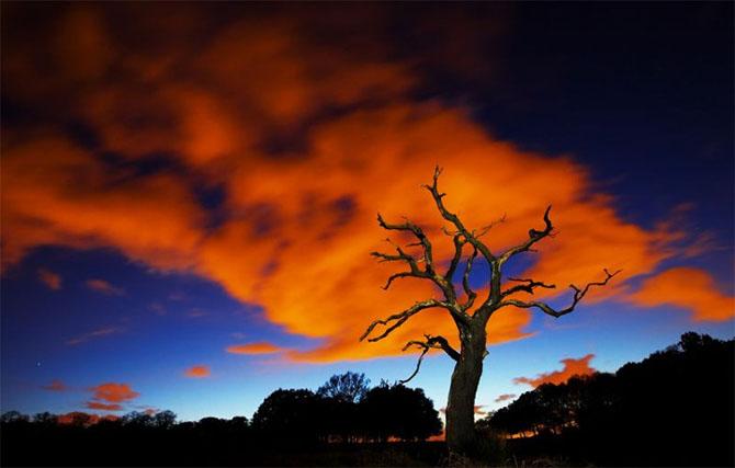 Natura in 22 de fotografii superbe - Poza 1