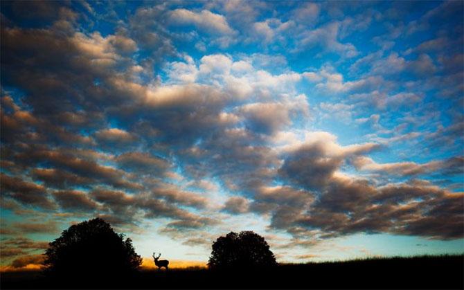 Natura in 22 de fotografii superbe - Poza 11