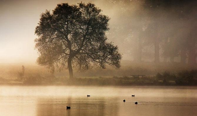 Natura in 22 de fotografii superbe - Poza 17