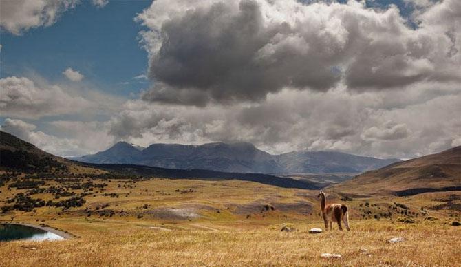 Natura in 22 de fotografii superbe - Poza 22