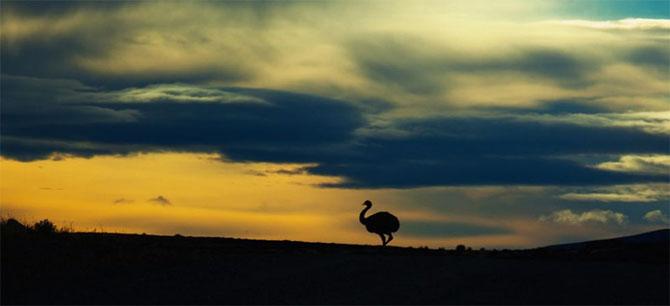 Natura in 22 de fotografii superbe - Poza 3