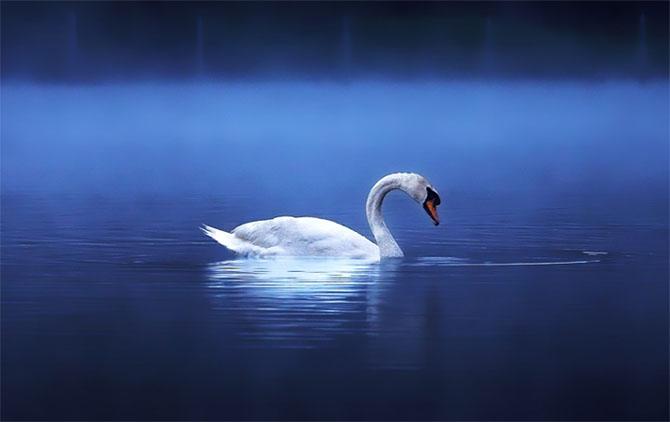Natura in 22 de fotografii superbe - Poza 7
