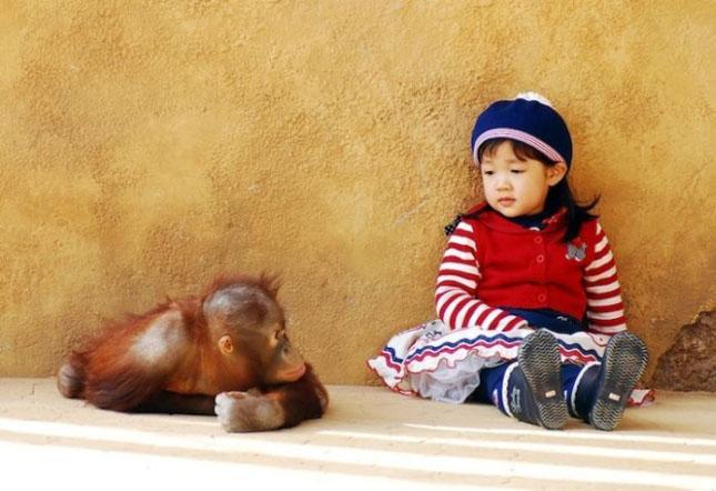 Impresionant aer de vedeta: 29 de poze cu animale - Poza 15
