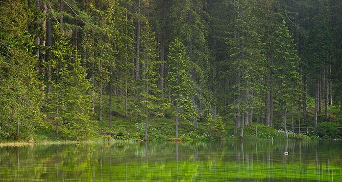 Natura, un deliciu vizual - Poza 7