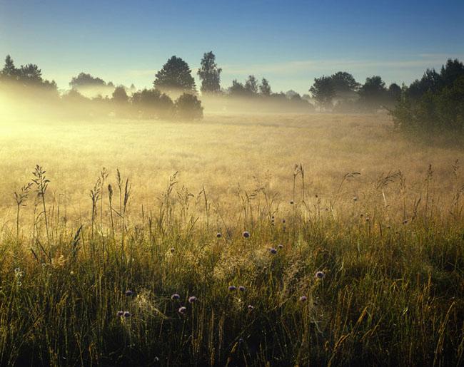 Natura surprinsa in fotografii: patru anotimpuri - Poza 2