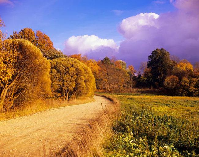 Natura surprinsa in fotografii: patru anotimpuri - Poza 13
