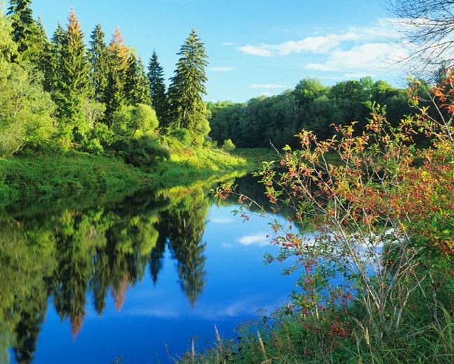 Natura surprinsa in fotografii: patru anotimpuri - Poza 17