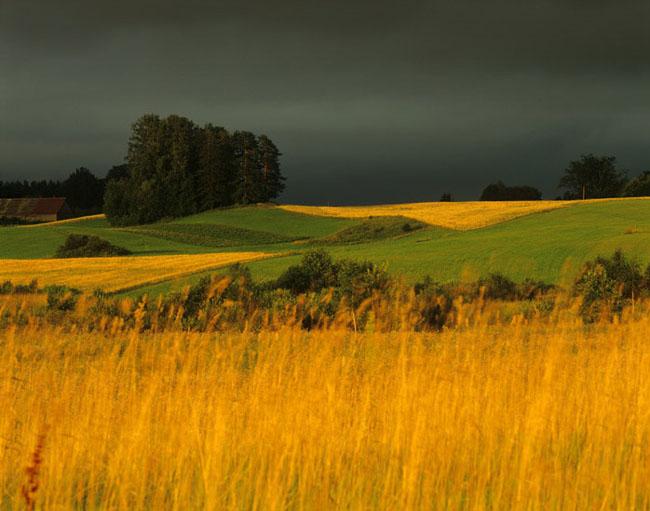 Natura surprinsa in fotografii: patru anotimpuri - Poza 3