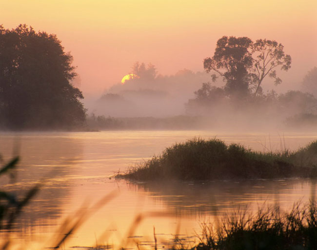 Natura surprinsa in fotografii: patru anotimpuri - Poza 4