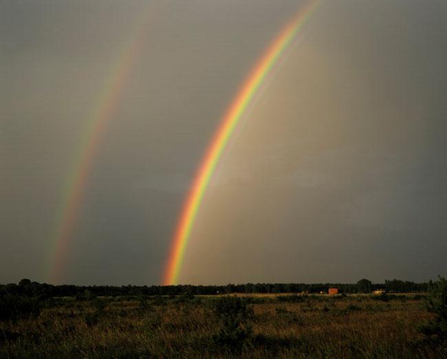 Natura surprinsa in fotografii: patru anotimpuri - Poza 6