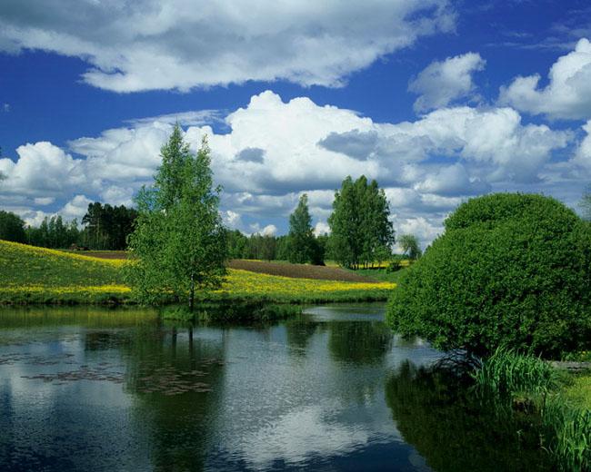 Natura surprinsa in fotografii: patru anotimpuri - Poza 7