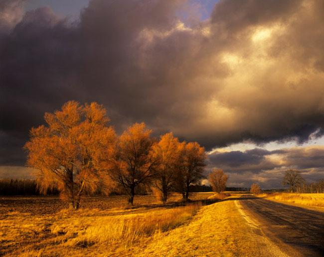 Natura surprinsa in fotografii: patru anotimpuri - Poza 9