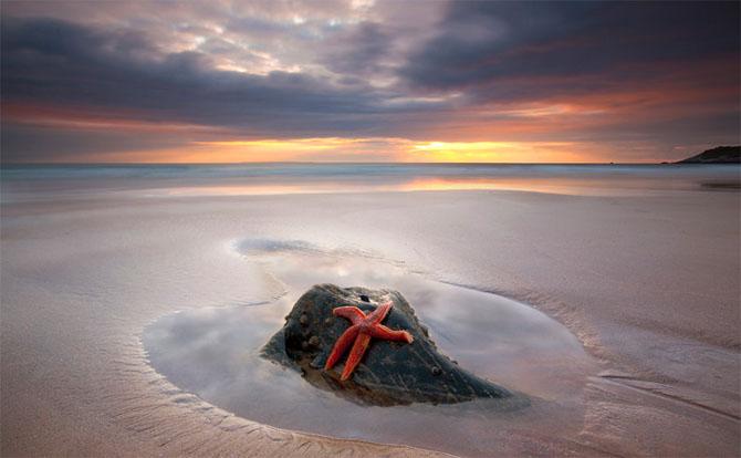 20 di fotografi exceptional din mana la Anton Spencer