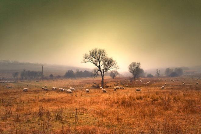 28 de fotografii superbe: Peisaje din Ungaria - Poza 26