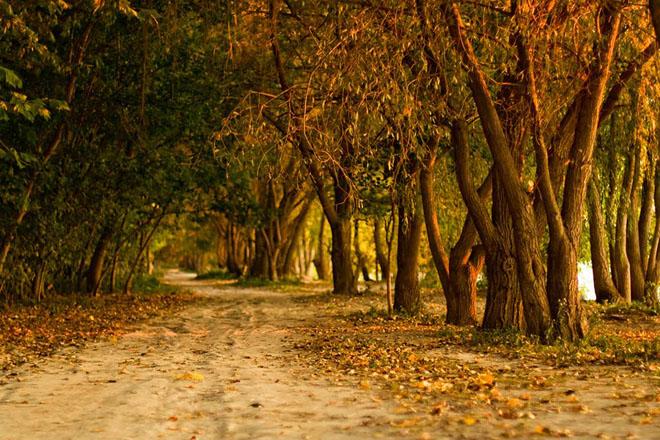 28 de fotografii superbe: Peisaje din Ungaria - Poza 4