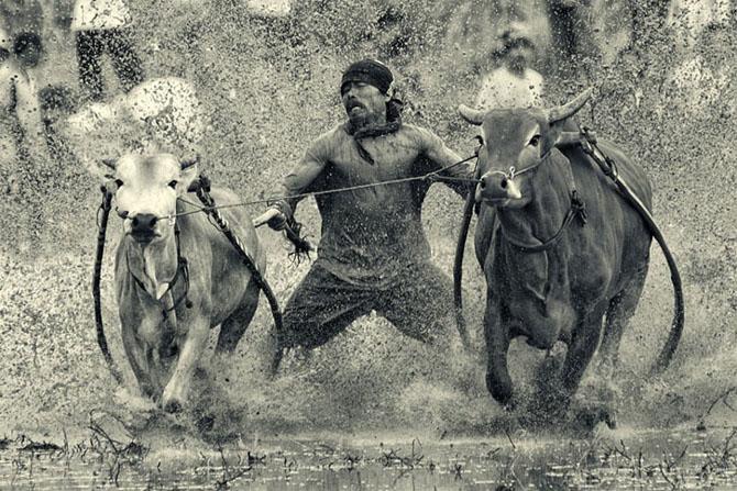 40 de fotografii exceptionale - Poza 11