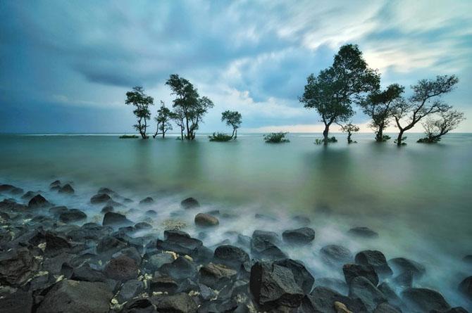 40 de fotografii exceptionale - Poza 29