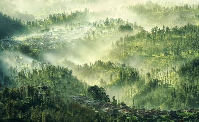 40 de fotografii exceptionale - Poza 7