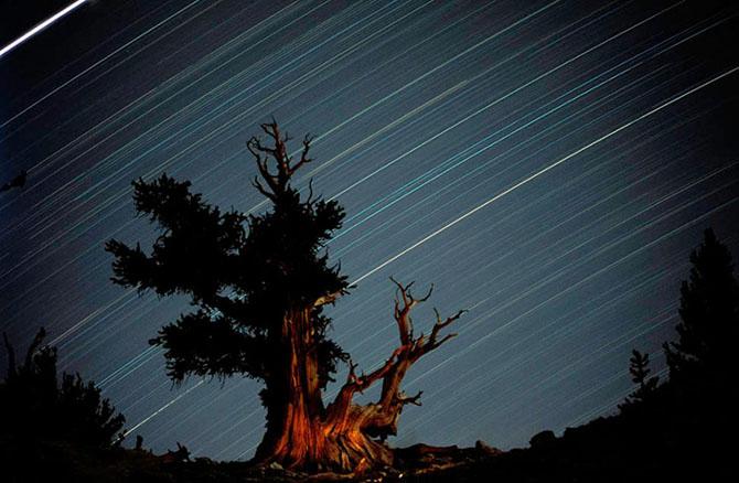 Cerul perfect - Poza 10