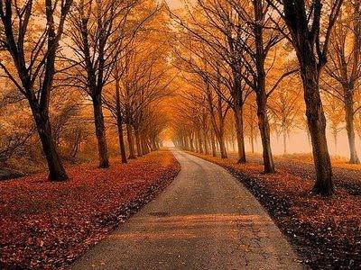 Ai vrea sa mergi pe aceste drumuri? - Poza 10