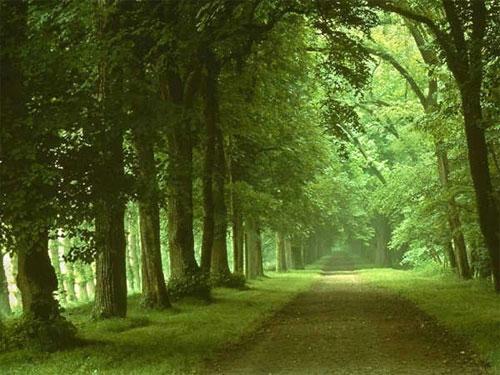 Ai vrea sa mergi pe aceste drumuri? - Poza 11