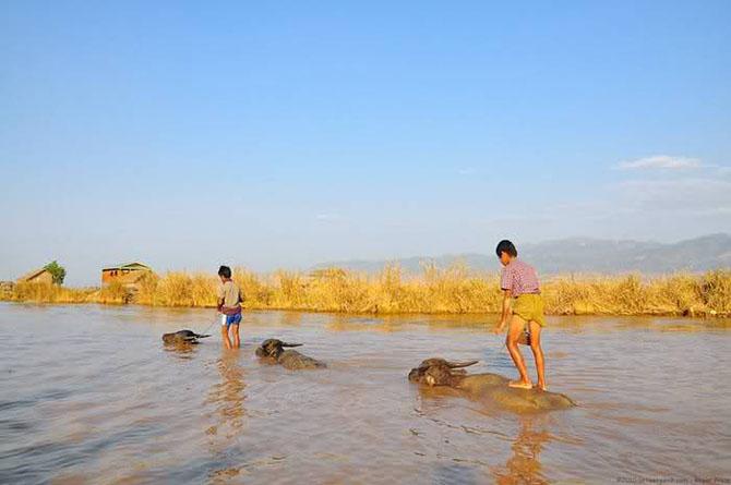 Burma, un taram fascinant - Poza 9