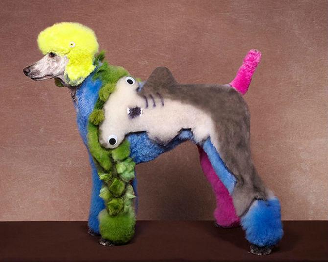 Cea mai excentrica expozitie de tunsori canine - Poza 3