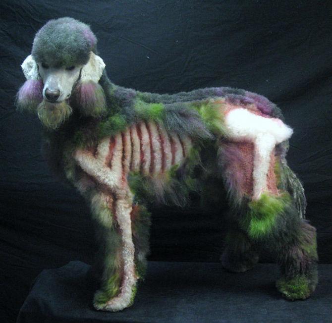 Cea mai excentrica expozitie de tunsori canine - Poza 4