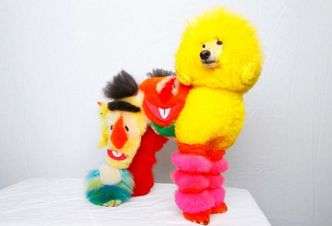 Cea mai excentrica expozitie de tunsori canine - Poza 1