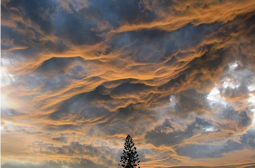 Norii in 35 de poze impresionante