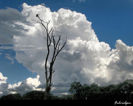 Norii in 32 de poze impresionante - Poza 24