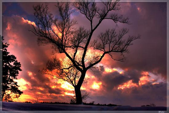 Norii in 32 de poze impresionante - Poza 25