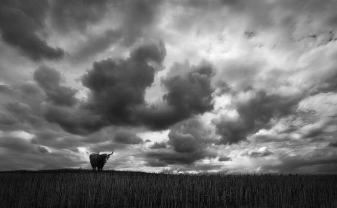 25 de fotografii minunate by Holger Droste - Poza 10