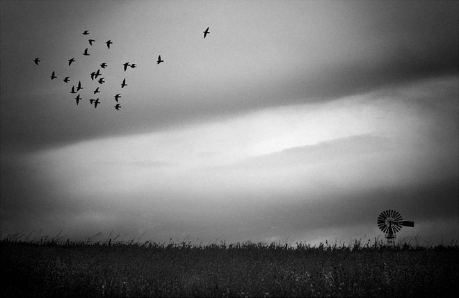 25 de fotografii minunate by Holger Droste - Poza 11